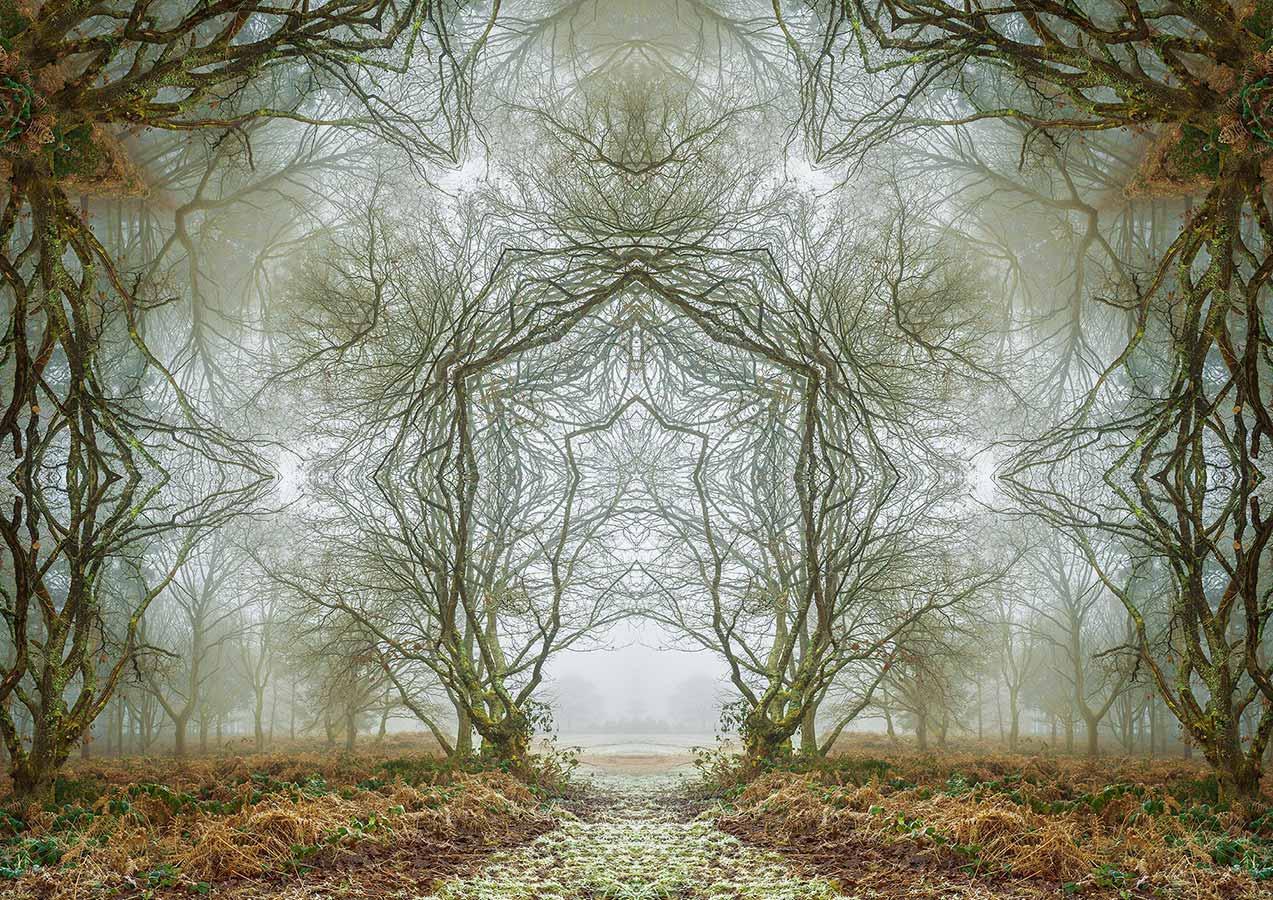 MATT WALFORD | Winter Portal
