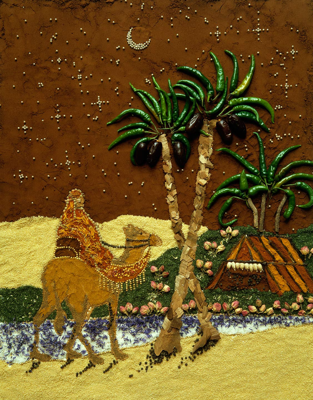 Tessa_Desert_Camel