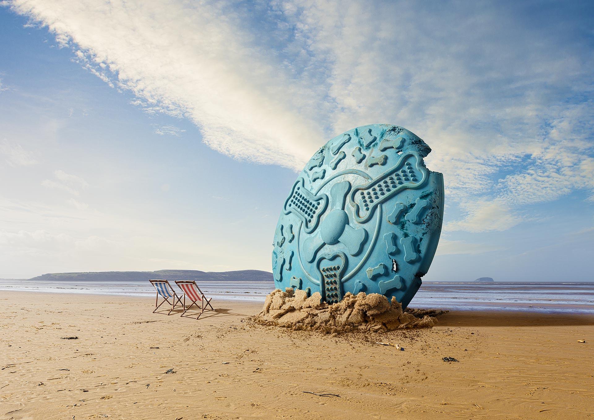 Matt_Dog_frisbee_on_beach
