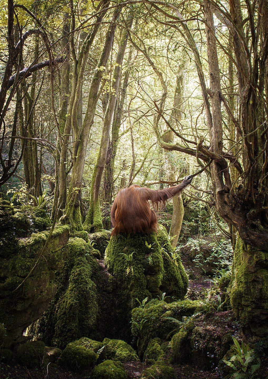 Matt_Orangutan_Back