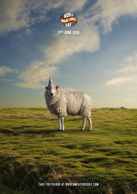 Matt_Meat_Free_Sheep