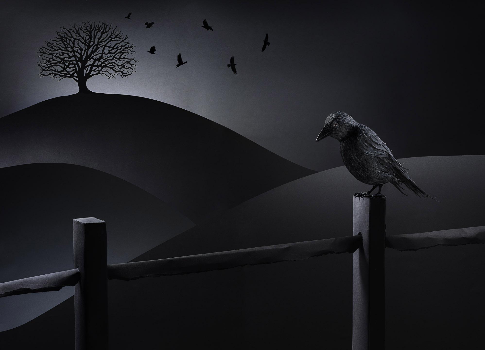 Tal_Crow