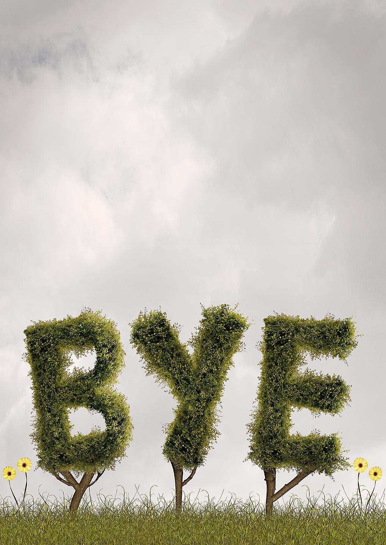MattW_Bye!